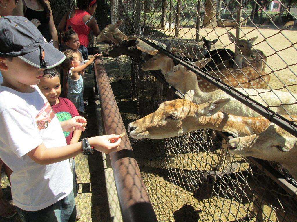 zoo-buenosaires