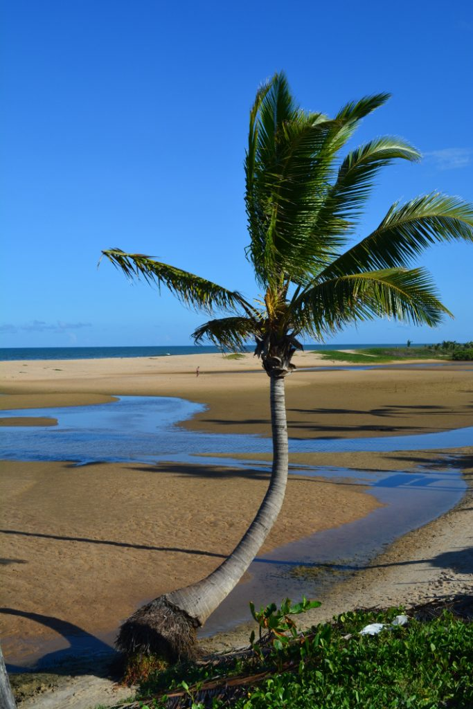 Imbassaí - Litoral da Bahia