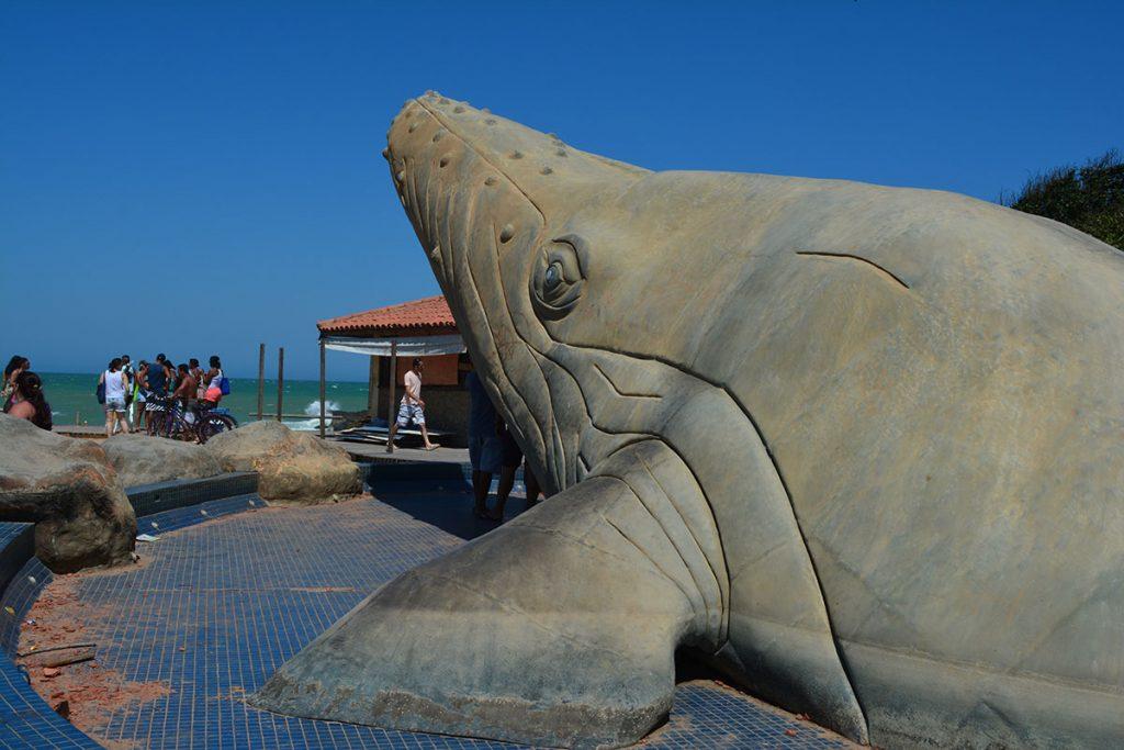 praca-da-baleia2